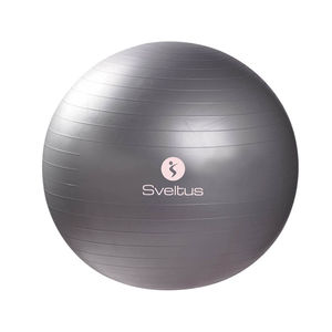 GYMBALL 65CM GRIS